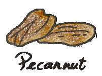 pecannut